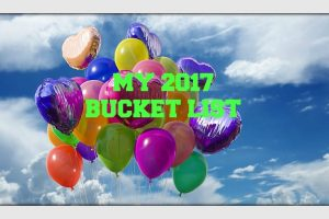 My 2017 Fun Bucket List