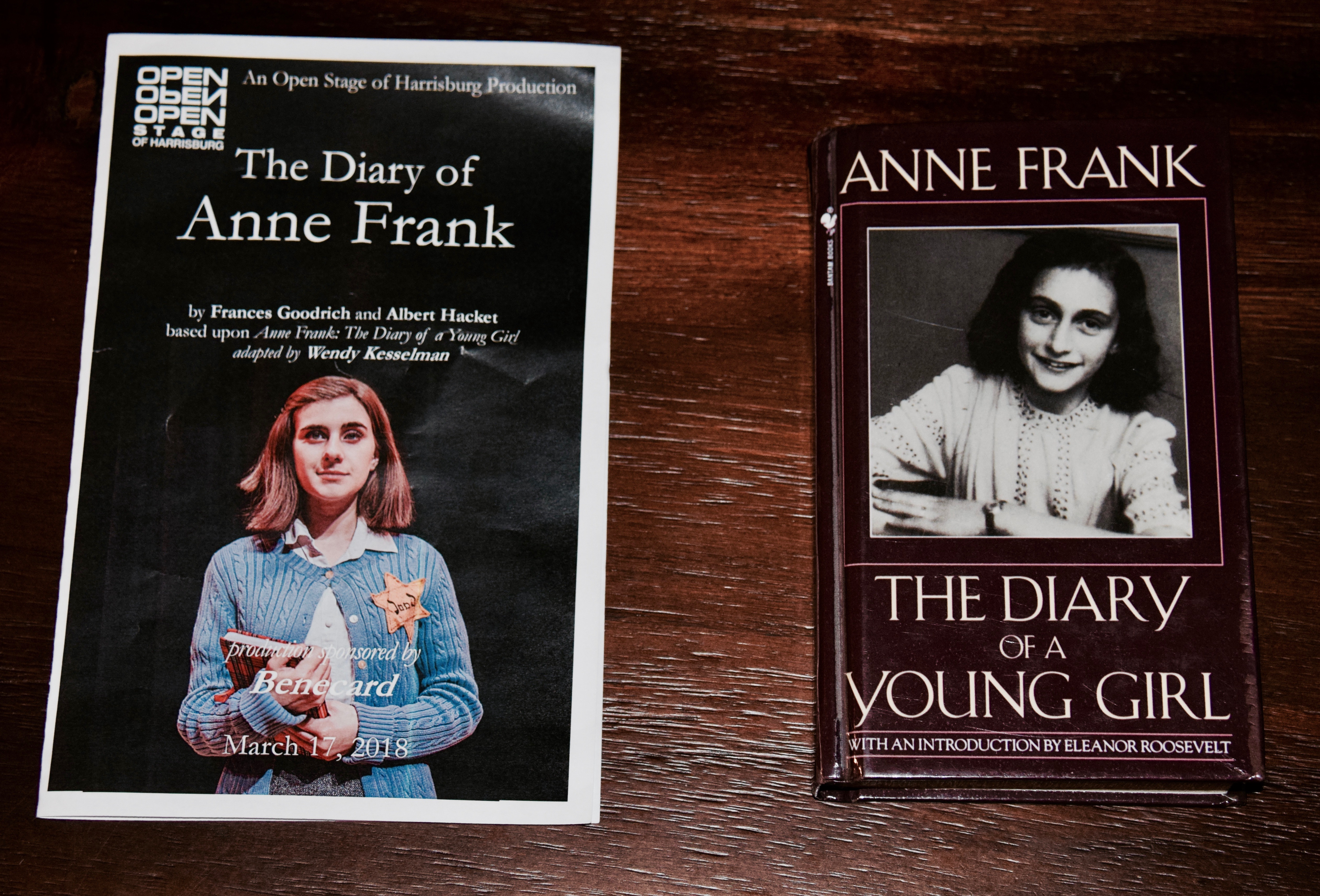 a book review of the diary of anne frank The diary of a young girl summary - the diary of a young girl by anne frank summary and analysis  the book begins on anne's thirteenth birthday,.