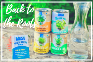 Review of Back to the Roots Indoor Organic Herb Garden