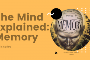 The Mind Explained: Memory (Netflix): My Takeaway